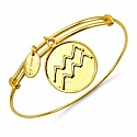 Gold Plated Brass 'Zodiac Symbol for Aquarius' Embossed on C