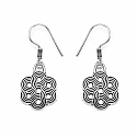 GLEAM TOUCH 4.25 Grams Oxidised Metal Alloy Earrings