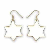 3.60 Grams Designer Plain Star Shape Brass Earrings